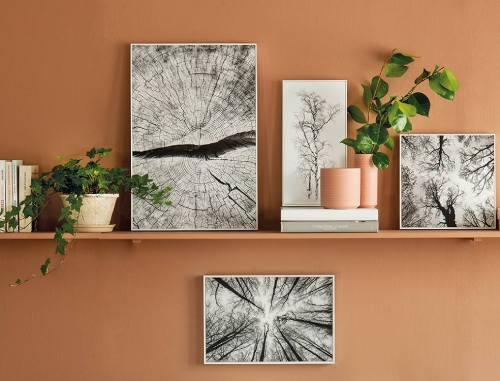 fotos para decorar corcho